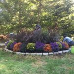 Designed Gardens Rates & Services