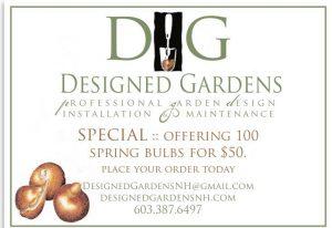 Designed Gardens Spring Bulbs